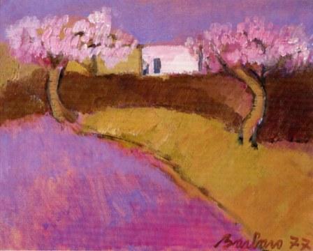 paesaggio rosa, 1977, olio su tela , cm 51x60
