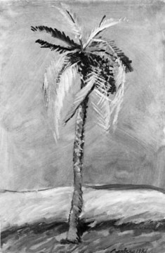 Palma ocra nel deserto, 1980, olio su tela