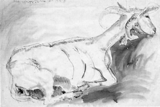 chèvre, 1958, china su carta, cm 69x98