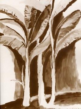musa paradisiaca, 2006, inchiostro di china su carta, cm 160x120